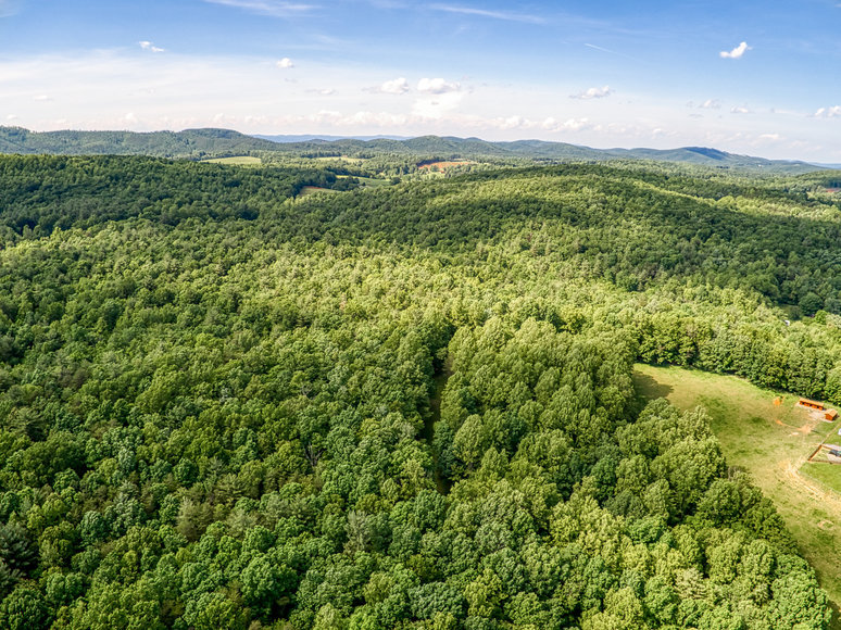 80.5 +/- Acre Timber Parcel in Patrick County, VA Only Minutes from the Blue Ridge Parkway