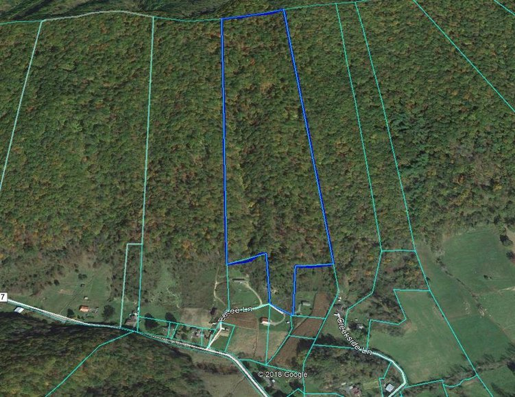 31 AC Vacant Land: Chilhowie, VA