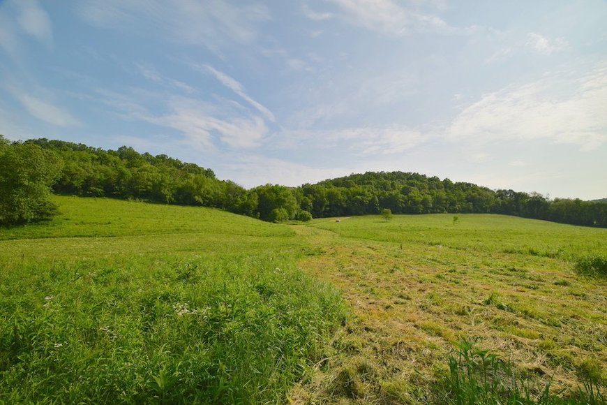 HOLMES COUNTY ABSOLUTE LAND AUCTION