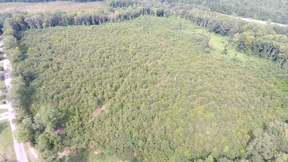 35+/- Acres Located in Richmond County, NC