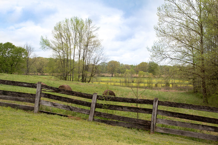 House & 5± Acres of Land for Sale - Tract 4 on Winwood Farms Loop, Middleton, TN