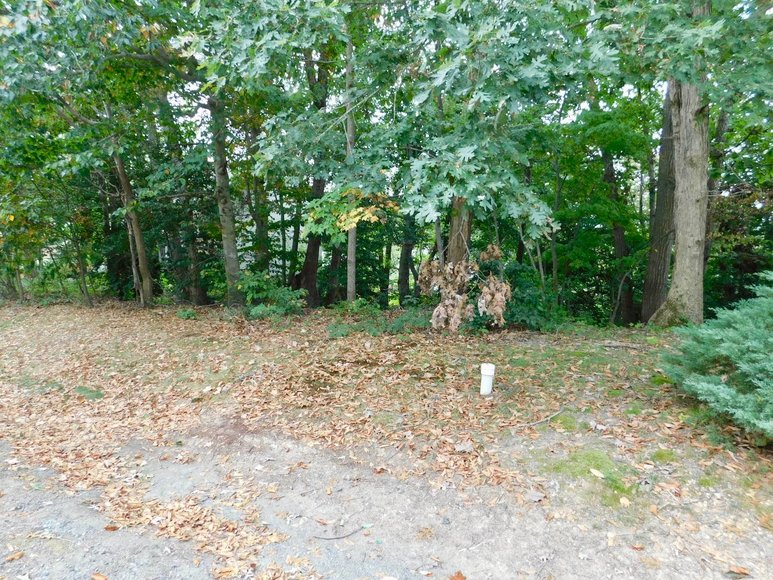 Wooded Waterfront Building Lot in Gated Community--North Stafford County, VA