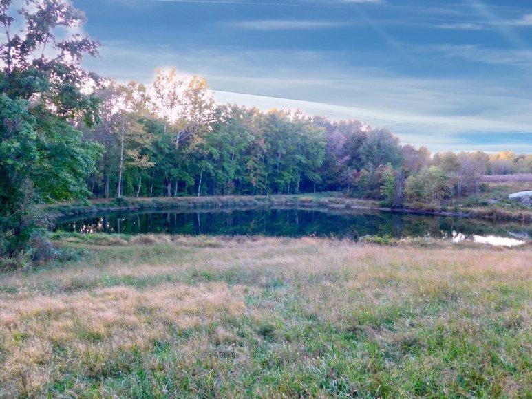 100 +/- Acres of Spotsylvania County Land--SELLS to the HIGHEST BIDDER via ONLINE ONLY BIDDING!!
