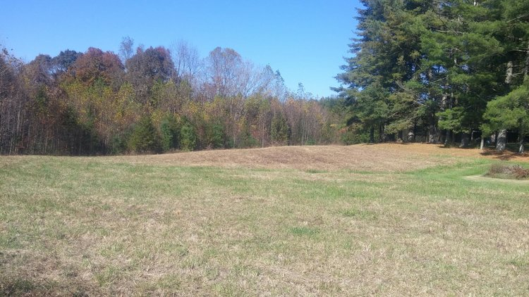 21.32± Acres on Holly Springs Road, Mount Airy, NC