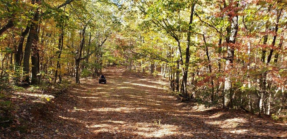 586 Acres on Turkeycock Mountain