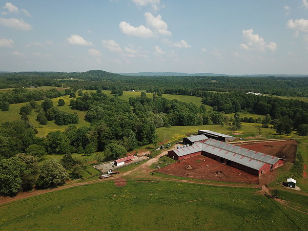Beautiful 301 Acre Farm on the Tye River