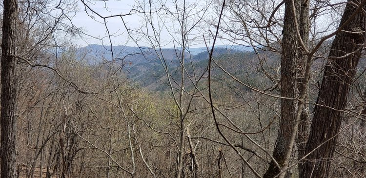 933 acres bordering the National Forest