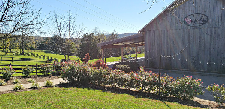 75 Acre Farm w/ Home and Event Barn Ideal for Bed & Breakfast, Weddings, Parties, Events, & More