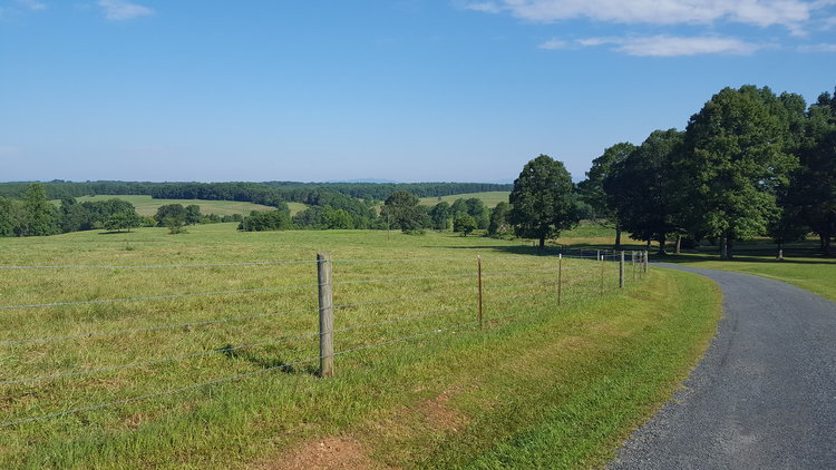224 Acre Farm offered in 3 Tracts
