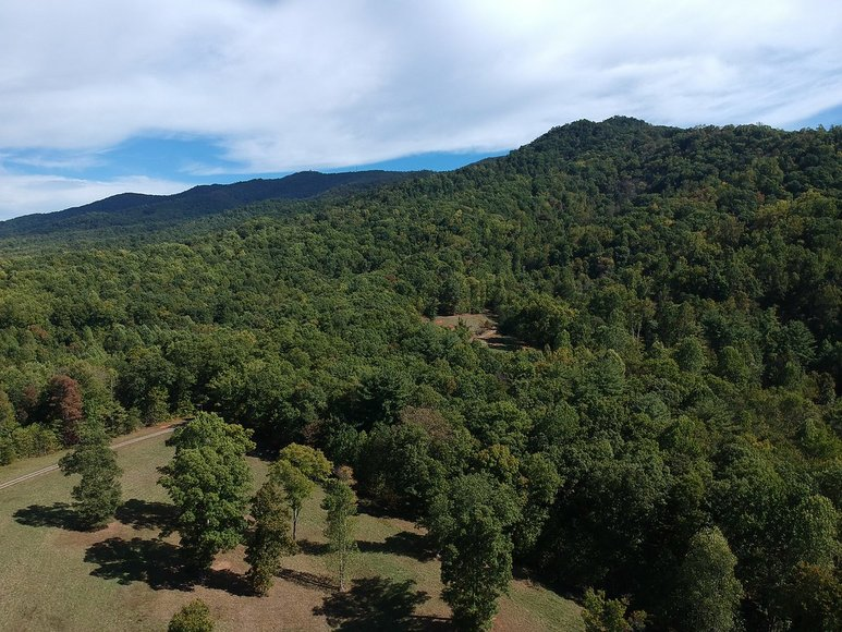 150 Acres on Tobacco Row Mountain (Buffalo Spur) Offered in 2 Tracts and as a Whole