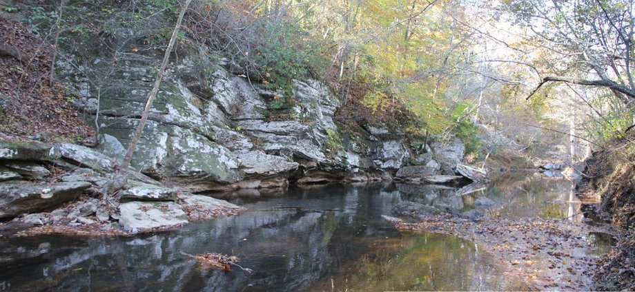95 Acre Farm with 1-1/2 Miles of Creek Frontage
