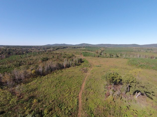 The Wheeler Estate 500 Acres with over 2 Miles of Road Frontage Offered in 6 tracts and as a whole