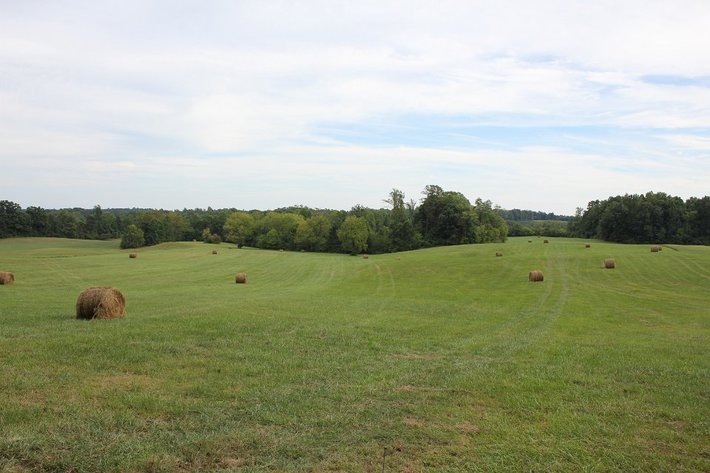 181 Acres of Farm & Timber Land Offered in 4 Tracts & As A Whole