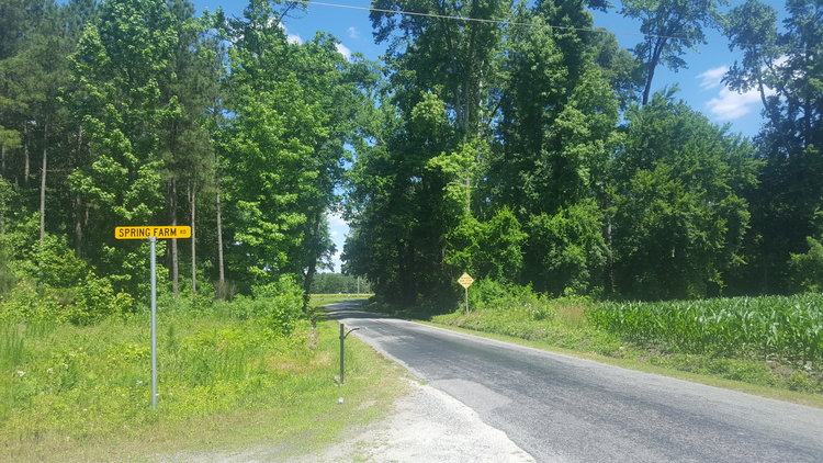 80 Wooded Acres (12 Lots) in Carsley Farms