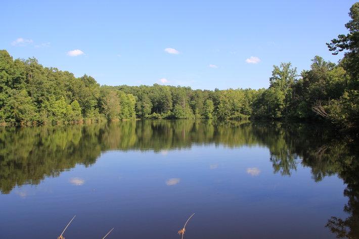 2,113 Acres in Amelia County