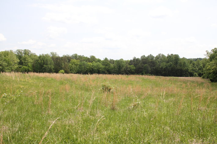345 Acre Farm Offered in 3 Tracts