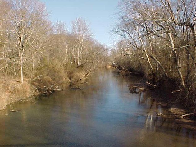 1,373 Acres in Amelia County