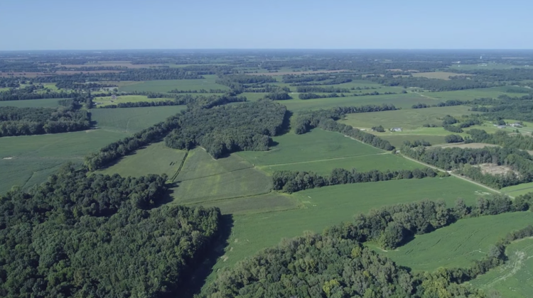 Farmland in Tipton County, TN ~ Court Ordered Auction to Settle the H. W. Key Estate