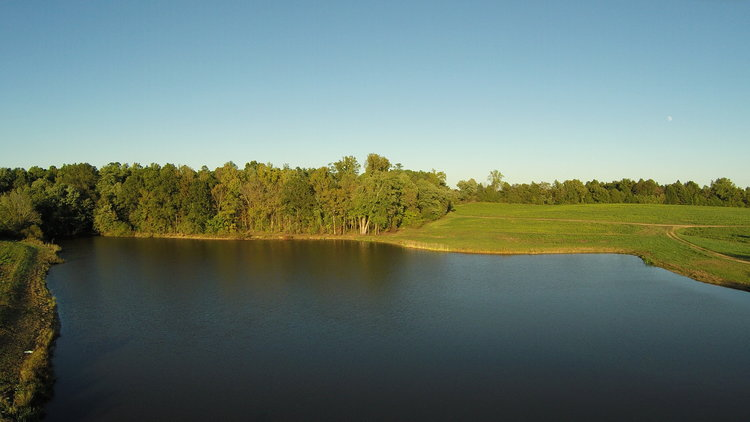 515 Acres, 2 Ponds, 2 Homes Offered in 6 Tracts