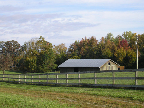 15 Acre Farm in Nottoway County