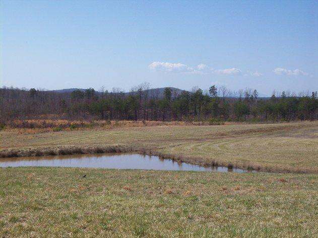 38 Acres in Appomattox