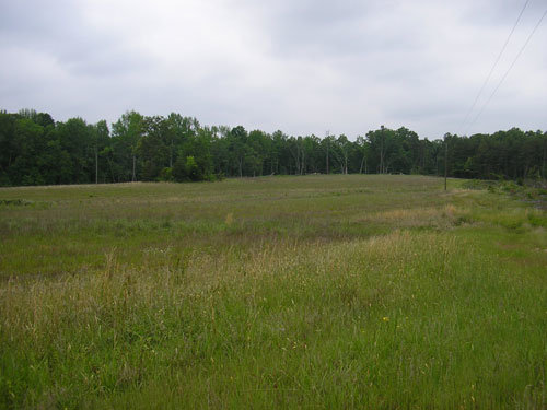 133 Acre Farm in Amherst