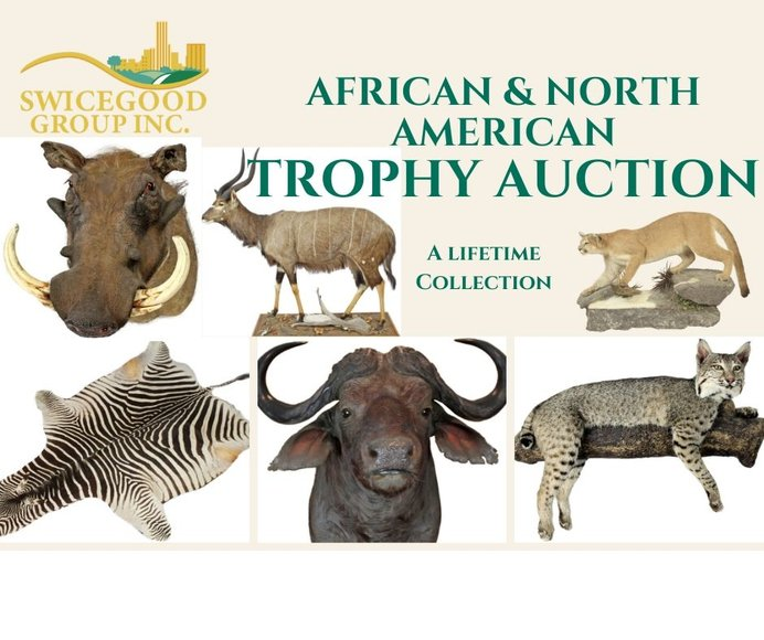 Sharkey Trophy Mount Collection**ENDING TONIGHT