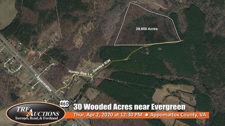 30 Wooded Acres off 460 in Evergreen