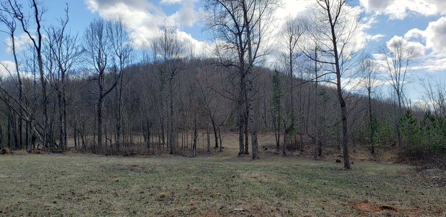 Beautiful 185 Acres in Bedford County