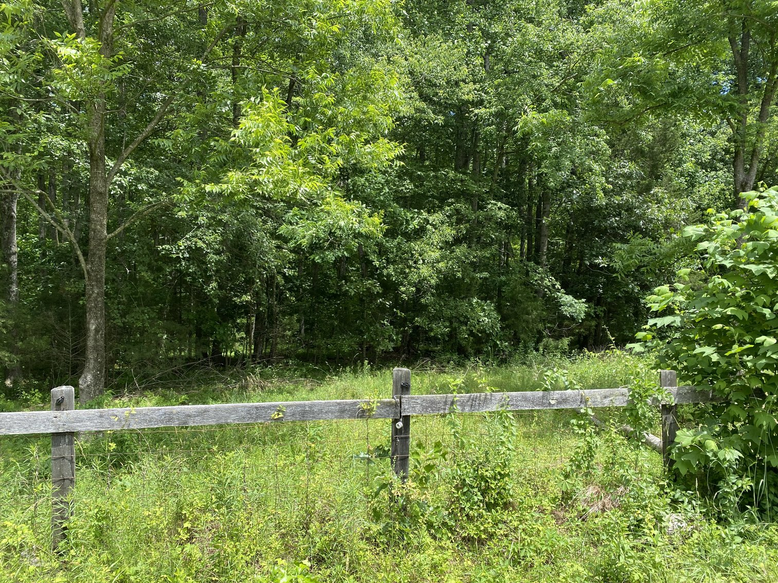 2.1 +/- Acre Wooded Building Lot in Orange County, VA