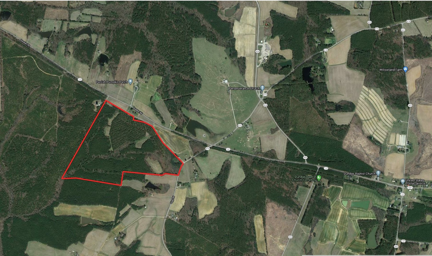 99 Acres of Timberland in Lunenburg County, VA