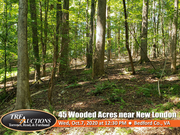 45 Wooded Acres in New London