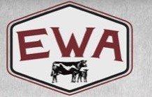Edgewood Performance Tested Bull Sale