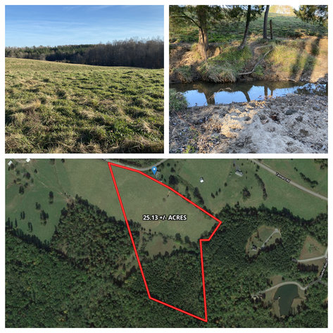 25.13 +/- Acres w/Creek on Property & 350' +/- of Road Frontage in Madison County, VA--SELLING to the HIGHEST BIDDER!!