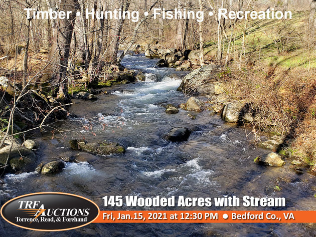 145 Wooded Acres on Overstreet Creek