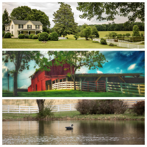 4 BR/2 BA Farm House, Barns, Fencing & 2 Ponds on 57.5 +/- Acres in Fauquier County, VA--SELLING to the HIGHEST BIDDER!!