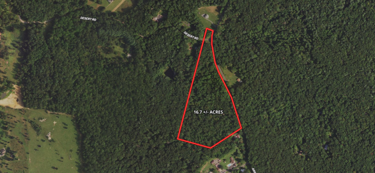 16.7 +/- Acres of Wooded Land in Madison County, VA--SELLS to the HIGHEST BIDDER!!
