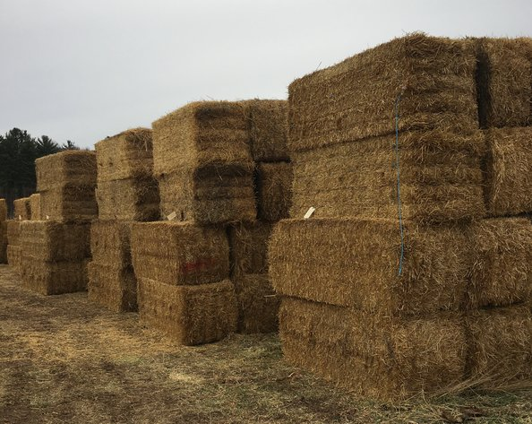 DECEMBER HAY AND FIREWOOD AUCTION