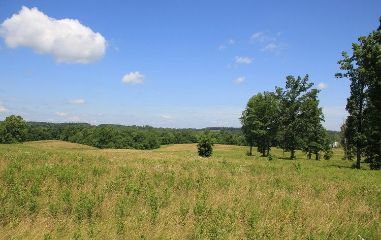 272 Acres near Hampden-Sydney College to benefit Patrick Henry Family Services