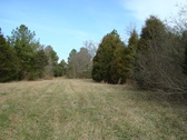 252 ACRES - CHESTER COUNTY, SC