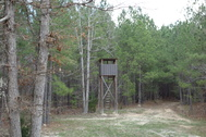 83.65 Acre Turn-Key Sportsman's Tract - Ridgeway, SC