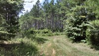 79 ACRES - FAIRFIELD COUNTY, SC