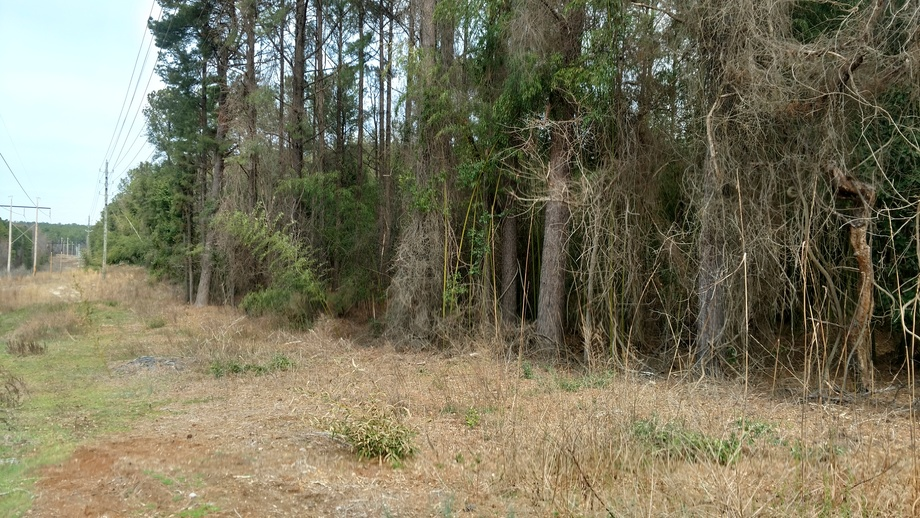 17.96+/- Acre Sealed Bid Land Sale in Southern Pines, NC