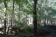 56.94 Acres Waterfront on the Broad River - Union County, SC