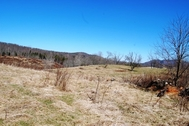 159 Acres - Sweet Springs, WV