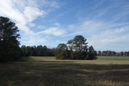 Hicklin Estate - 56 Acres & Residence- Fairfield County, SC