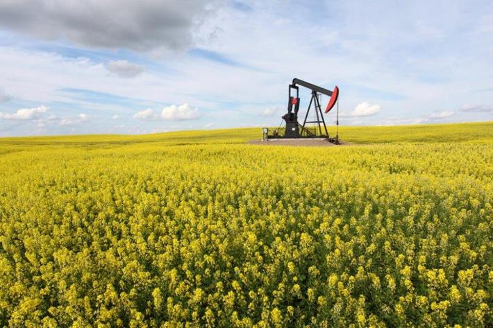 Guernsey Co. Ohio Oil & Gas Rights(Sold $114,816.9 w/BP)