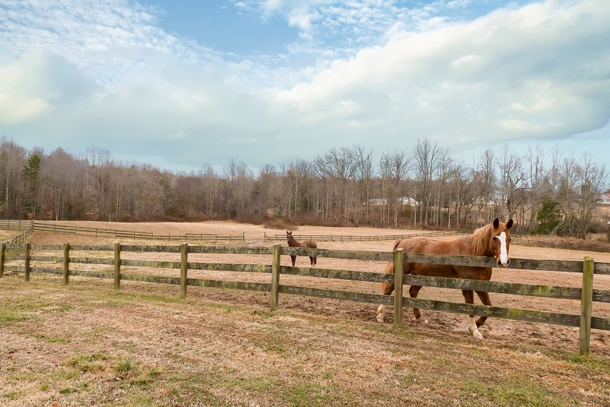 Featured Image for 4 BR/4 BA Custom Home w/Barn & Fenced Pasture on 33 +/- in Madison County, VA