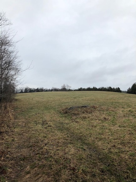 Featured Image for 30 +/- Acres w/River Frontage & Creek Frontage in Madison, VA--Sells to the Highest Bidder!!