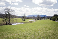 Eugene Thomas Farm 72+/- Acres & 5 Bedroom Home Meadowbridge WV